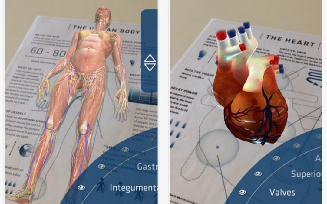 Augmented Reality medical anatomy demonstration